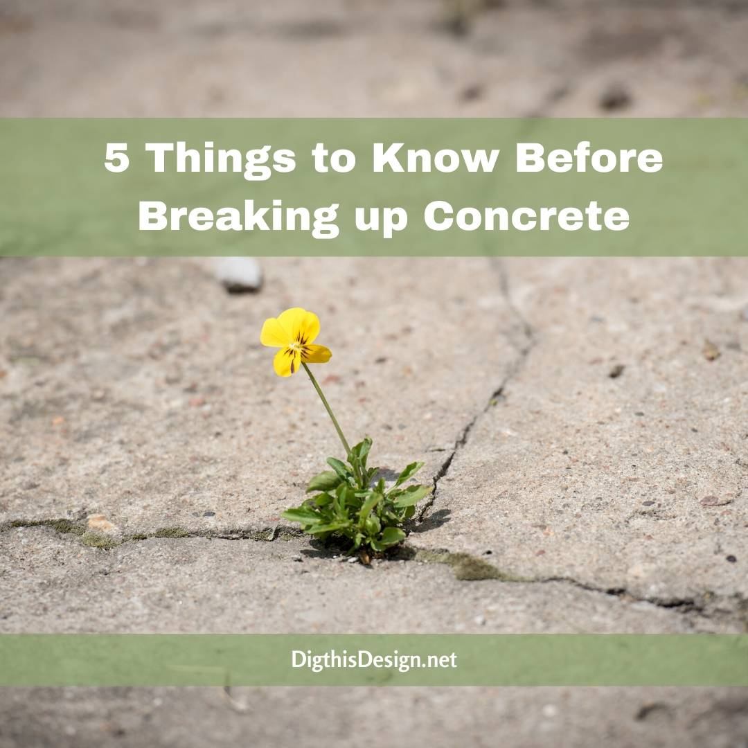 5 Things to Know Before Breaking up Concrete