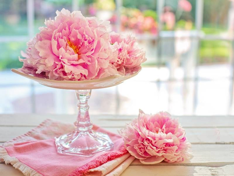 Peony Flowers Arrangement