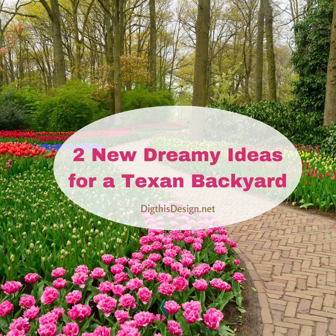 2 New Dreamy Ideas for a Texan Backyard