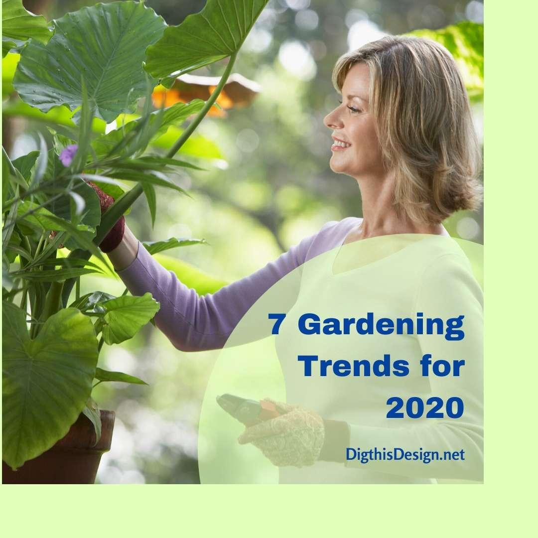7 Gardening Trends for 2020