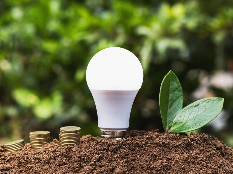 Easy Ways to Implement Green Living in your Lifestyle