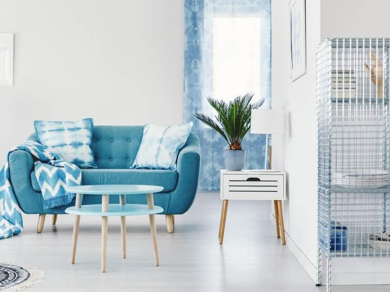 Blue Interior Design Trends in 2020