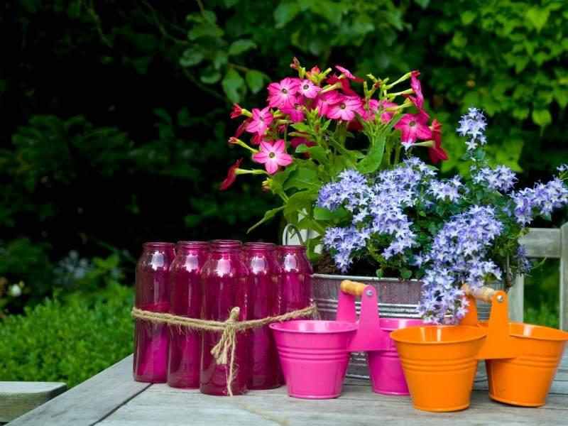 DIY Garden Tips for Decor