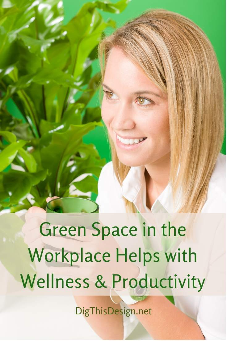 The Benefits of Green Space in a Workplace