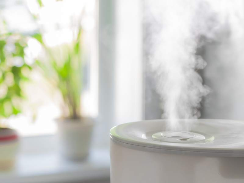 Buying a Humidifier • What You Need to Know