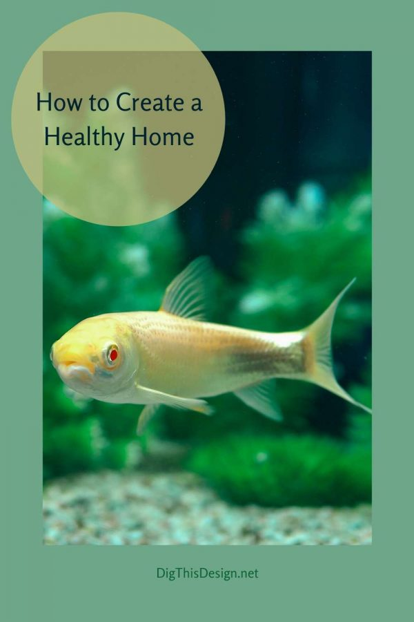 Ways to Achieve a Healthy Home