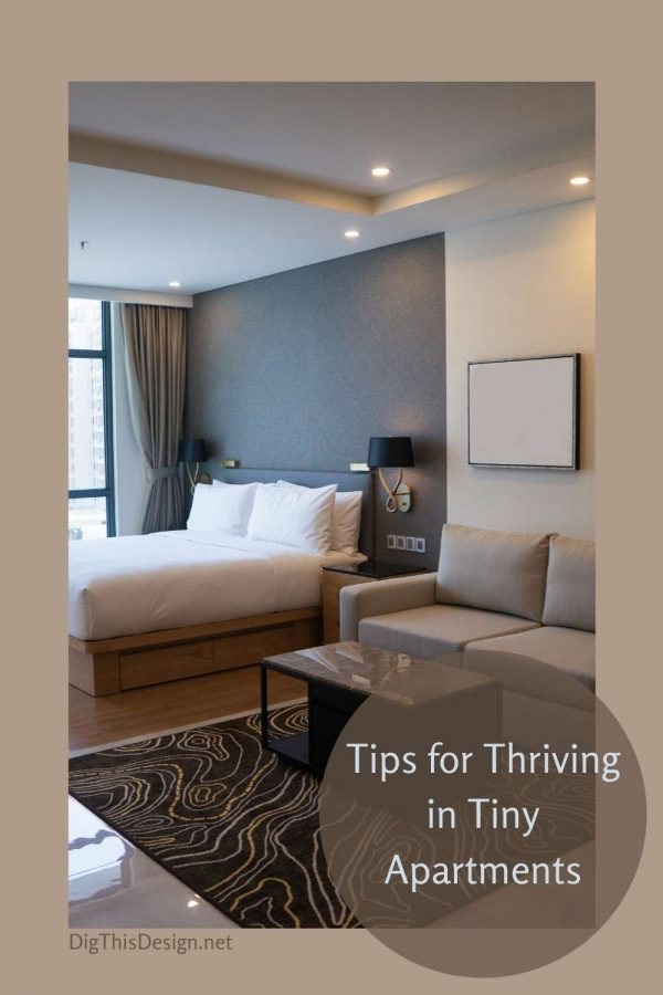 How to Thrive in Tiny Apartments
