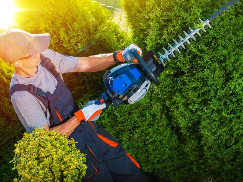 Finding Good Landscaping Services at Reasonable Prices