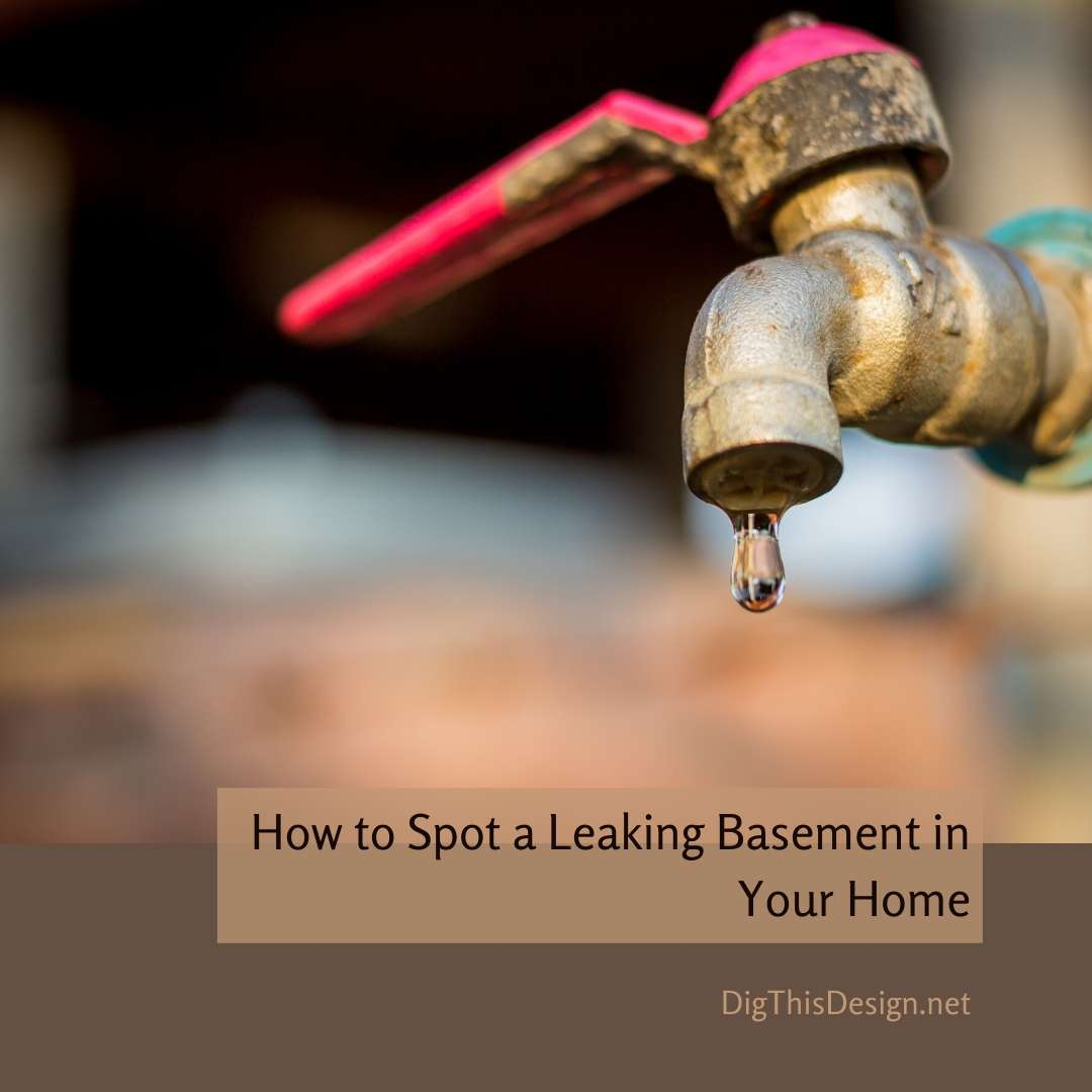 How to Spot a Leaking Basement in Your Home