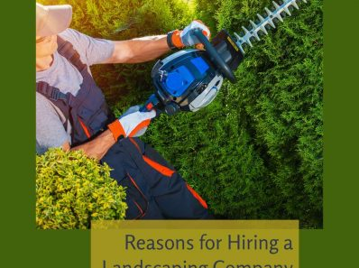 Reasons for Hiring a Landscaping Company