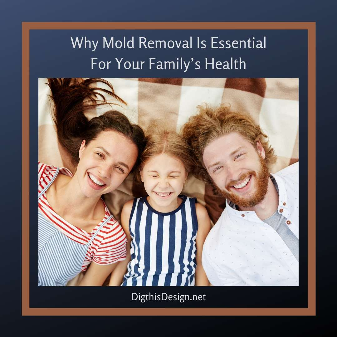 Why Mold Removal Is Essential For Your Family's Health