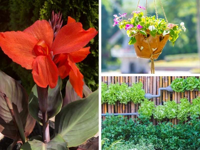 3 Easy Tips for a More Interesting Garden