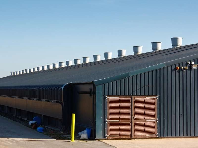 7 Qualities of Great Commercial Roofing Companies
