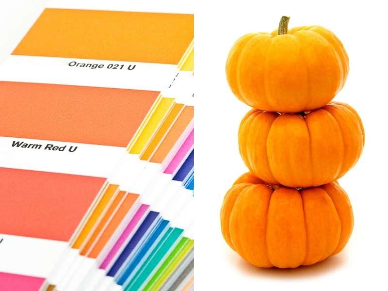 Making Color Harmonies With Pumpkin