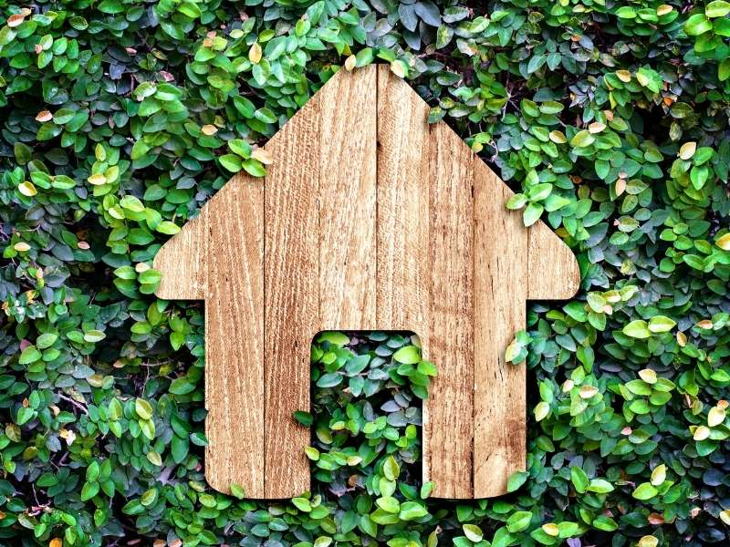 Eco-friendly Materials For Furniture, Flooring, & Decor