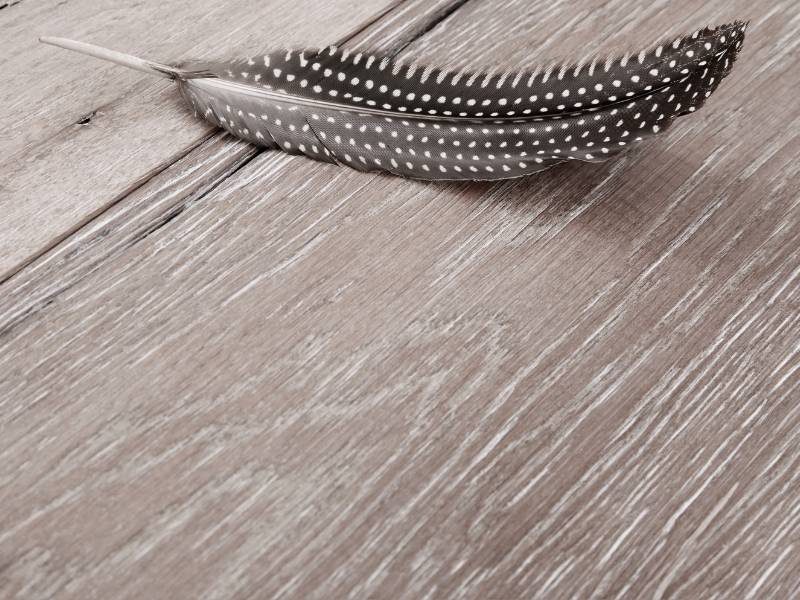 What You Need to Know About Engineered Hardwood