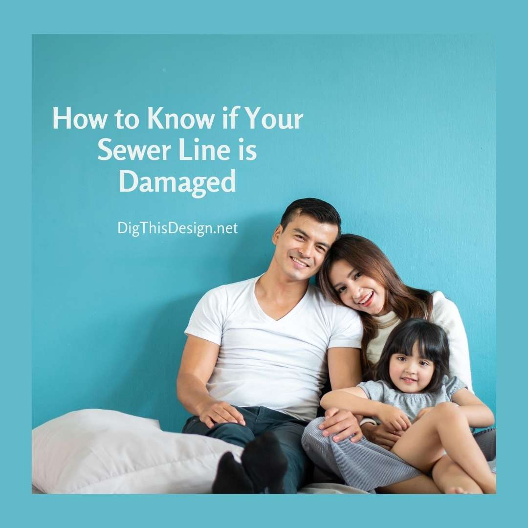 How to Know if Your Sewer Line is Damaged