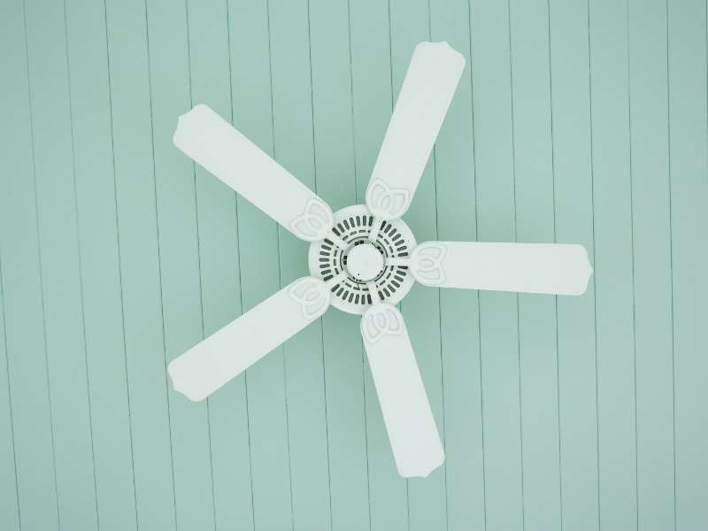 Functional Aesthetics: 5 Tips for Matching Ceiling Fans ...