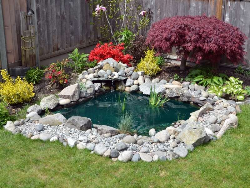 6 Affordable DIY Outdoor Decor Ideas for Your Backyard - Build a Stone Pond