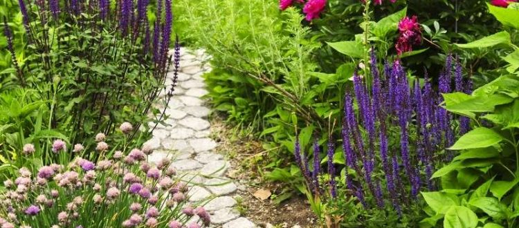6 Affordable DIY Outdoor Decor Ideas for Your Backyard - Build a Stone Pathway