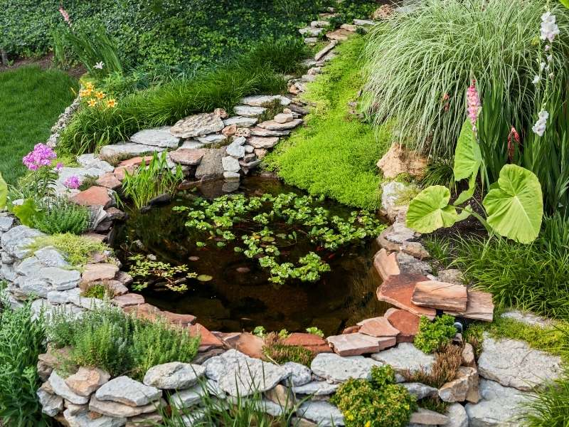 Adding a Pond to Your Home's Exterior