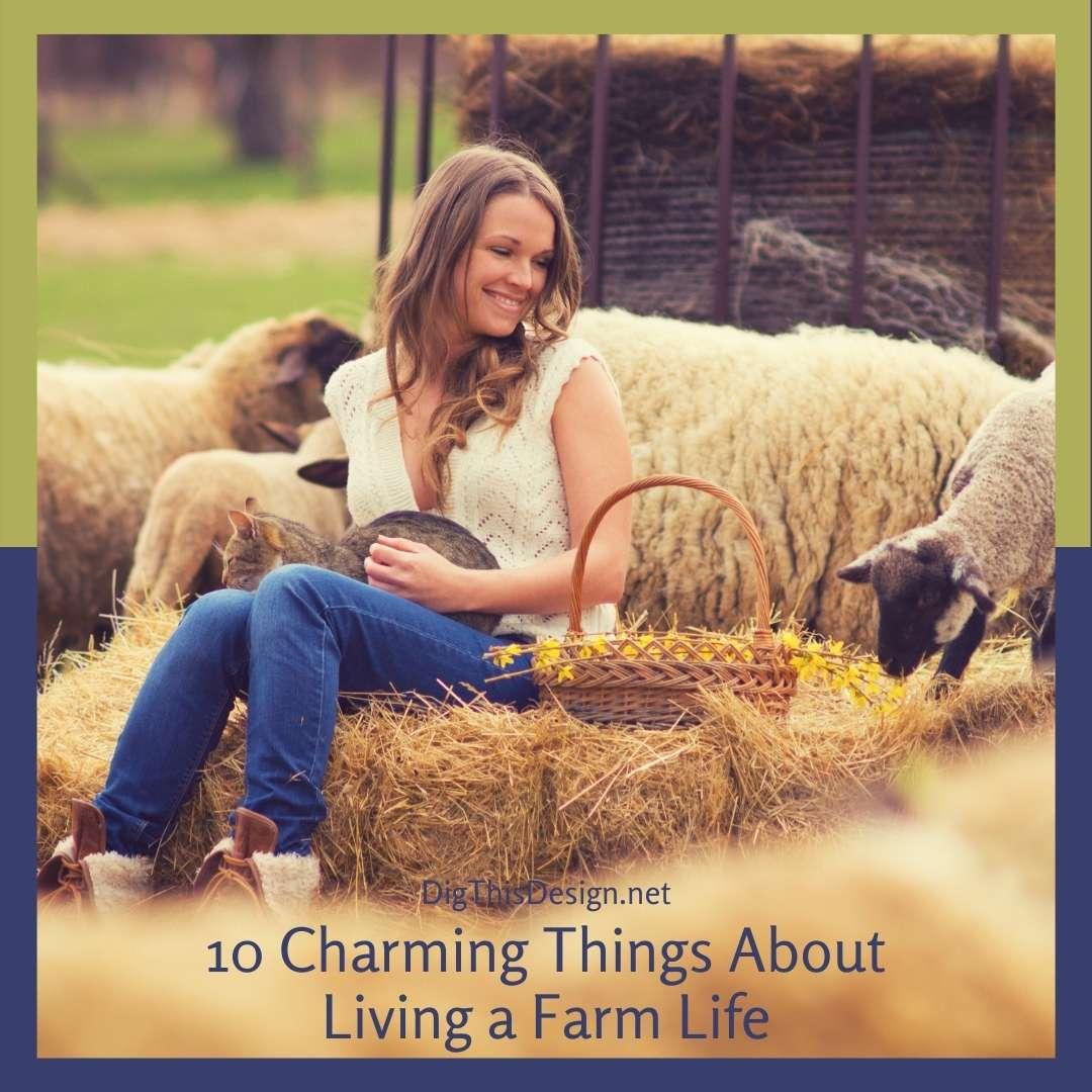 Living a Farm Life