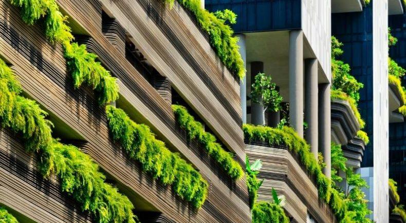 Biophilic Design in Architecture