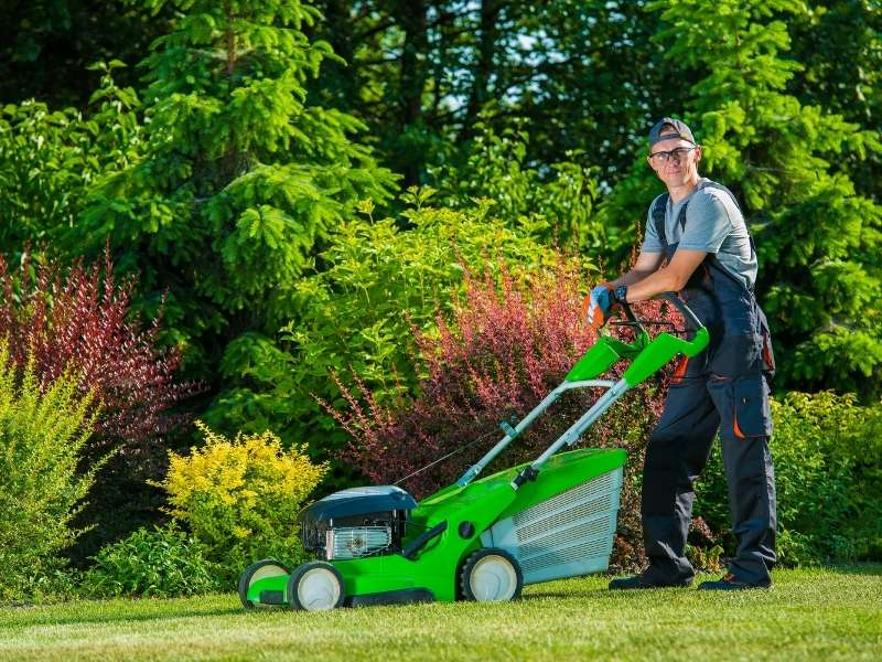 7 Quick Fixes for an Ugly Lawn