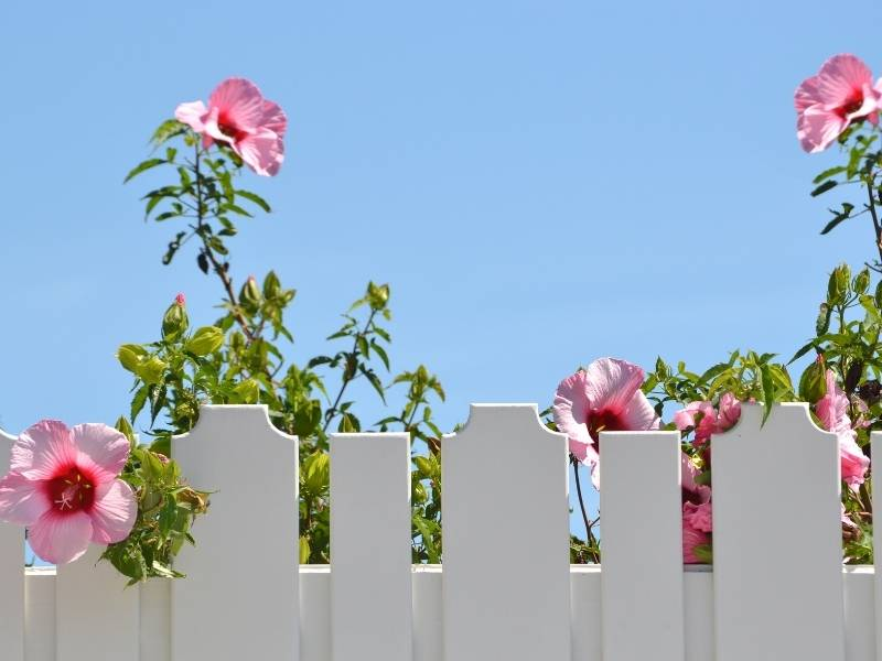 DIY Fence for Your Garden • Step by Step