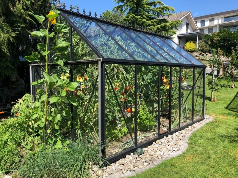 How to Choose a Greenhouse Kit