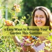 5 Easy Ways to Revamp Your Garden This Summer