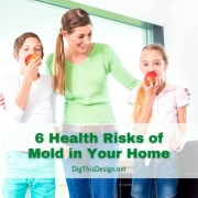 Mold in Your Home - happy and healthy mother, daughter, son.