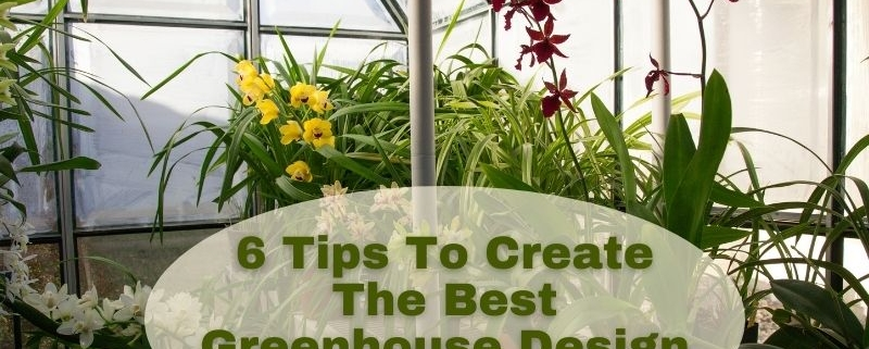 6 Tips To Create The Best Greenhouse Design
