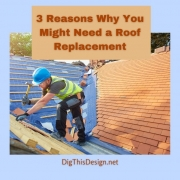 Why You Might Need a Roof Replacement