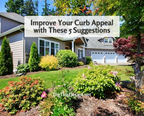 Improve Your Curb Appeal with These 5 Suggestions