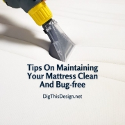 Tips On Maintaining Your Mattress Clean And Bug-free