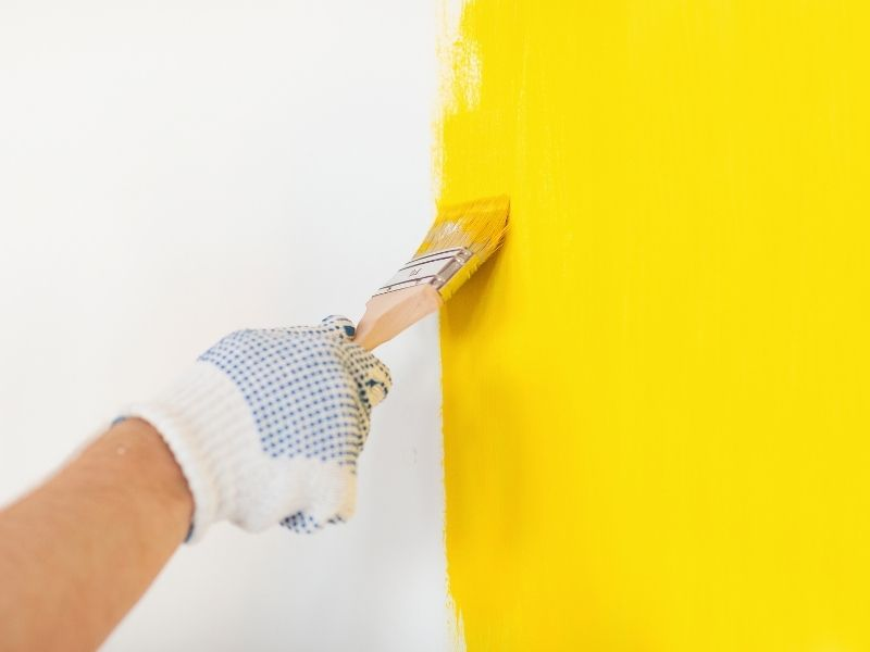 Your Guide to the Different Types of Paint for Your Home