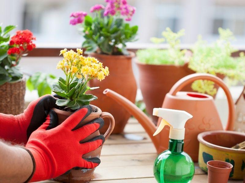 Tips For Creating A Garden For Apartment Living Indoor Garden Bench