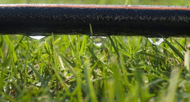 9 Water Conservation Garden Design Ideas - Soaker hose.