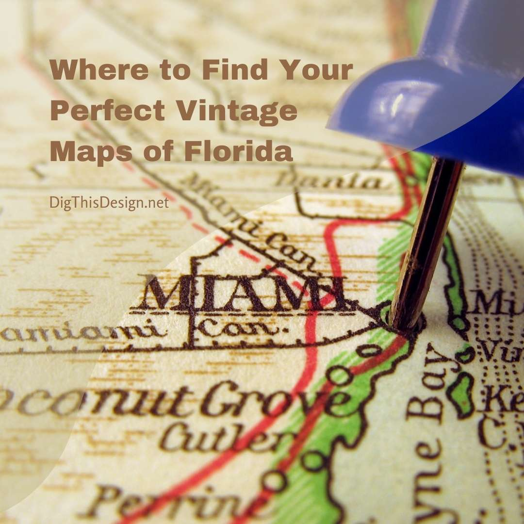 Where to Find Your Perfect Vintage Maps of Florida