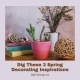 Dig These 3 Spring Decorating Inspirations