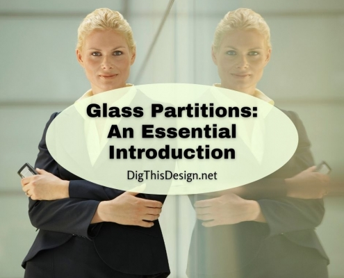 Glass Partitions An Essential Introduction