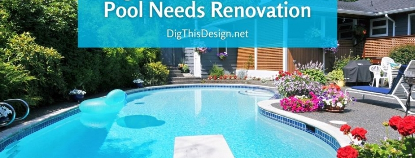 6 Signs That Indicate Your Pool Needs Renovation