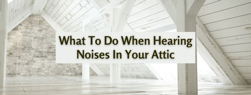 What To Do When Hearing Noises In Your Attic