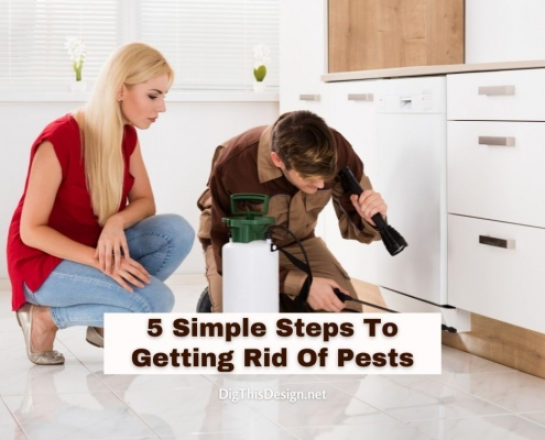 5 Simple Steps To Getting Rid Of Pests
