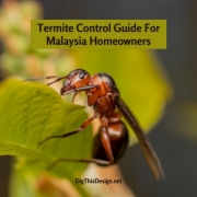 Termite Control Guide For Malaysia Homeowners